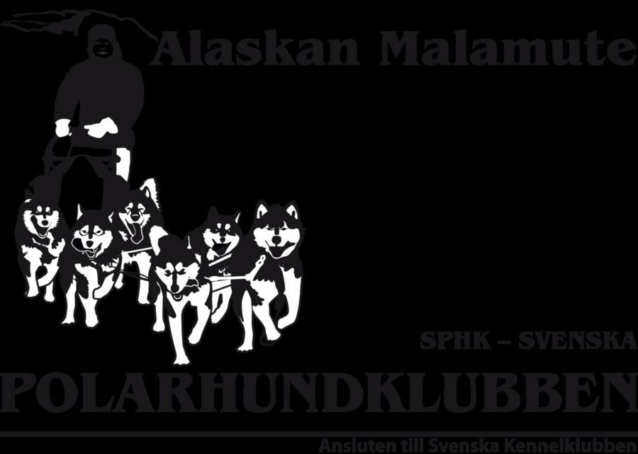 SPHK – Alaskan malamute