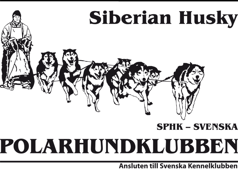 SPHK – Siberian husky