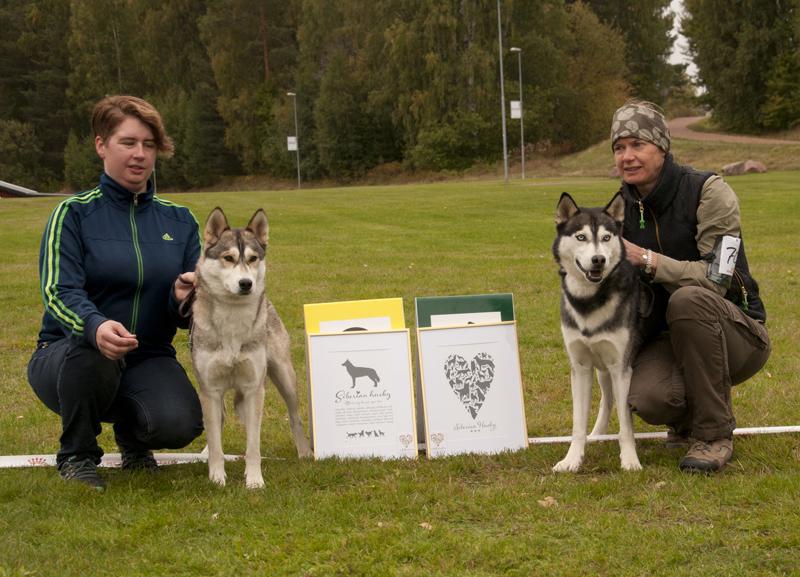 Bild på vinnande hundar BIR och BIS
