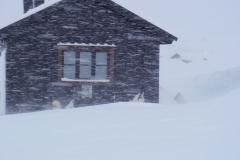 4-Grönlandshundar-då-ovädret-börjar-i-Touttaur-1100-m.ö.h.